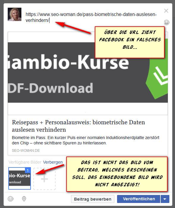 Facebook: WordPress Beitrag Bild falsch