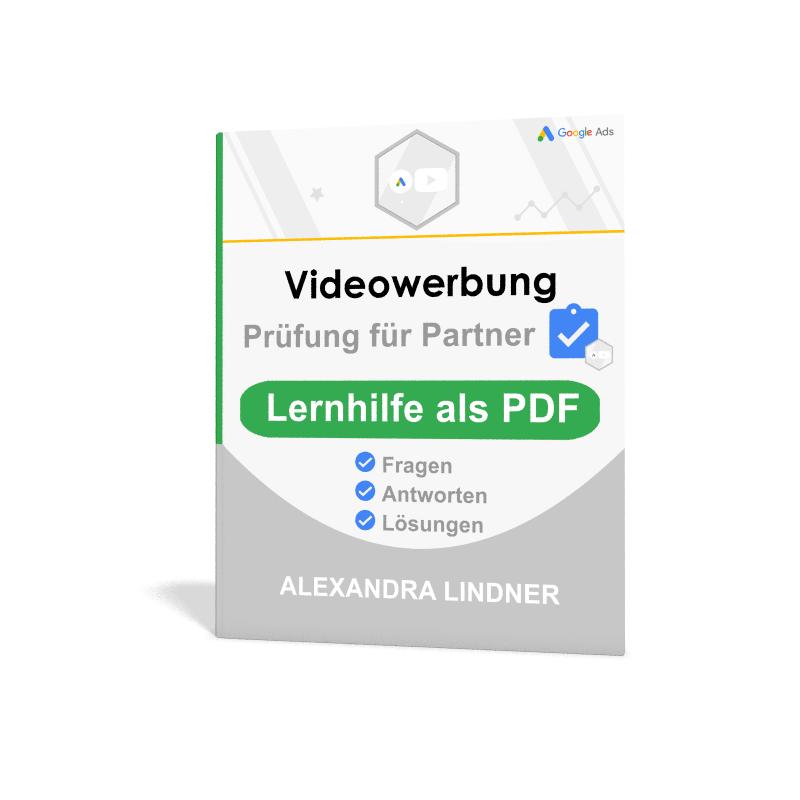 PDF Google Ads Videowerbung
