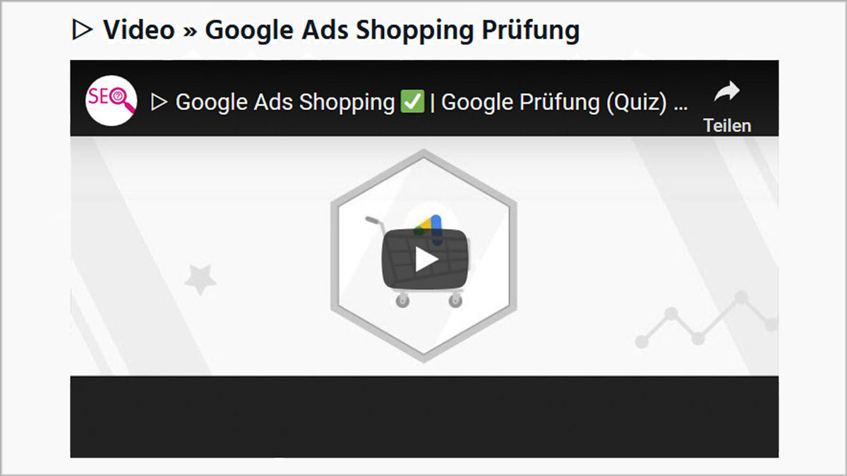 Video Google Ads Shopping Prüfung
