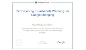 Google Prüfung Shopping