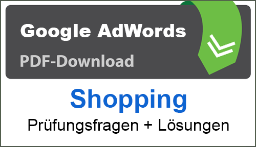 PDF Google AdWords Google Shopping