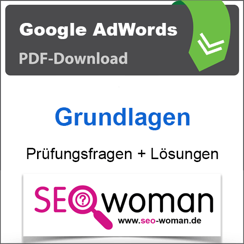 PDF Google AdWords Grundlagen