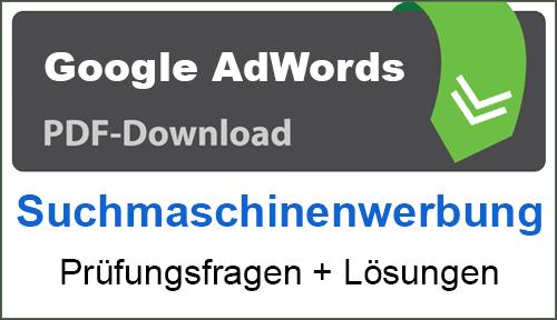 PDF Google AdWords Suchmaschinenwerbung