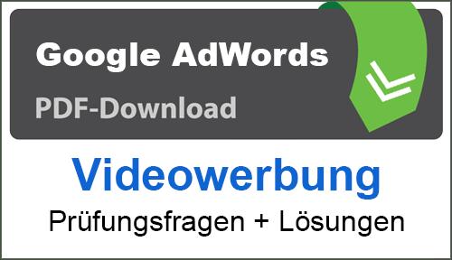PDF Google AdWords Videowerbung