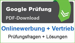 PDF Google Onlinewerbung + Vertrieb