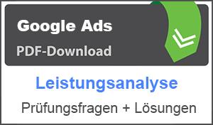 PDF Google Ads Leistungsanalyse