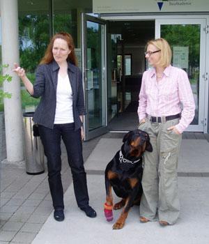bayrische bauakademie mit hund
